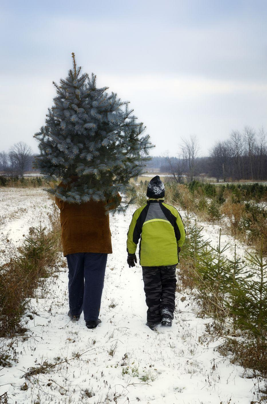 """<p><strong>Raymond, Main</strong><strong>e</strong> (Starting November 29)</p><p>Head into the forest and determine which tree is the right one for you and your family at <a href=""""https://balsamridgechristmas.com/index.php/events"""" rel=""""nofollow noopener"""" target=""""_blank"""" data-ylk=""""slk:Balsam Ridge Christmas Tree Farm"""" class=""""link rapid-noclick-resp""""><strong>Balsam Ridge Christmas Tree Farm</strong></a>. Kids will love hanging out with farm animals and roasting marshmallows at their fire pit, and Santa stops by on December 1 and 2. What will keep you coming back for more is the farm's maple products, which are available year-round. Don't leave without picking up some maple butter, maple cream, and of course, maple syrup. <br></p>"""