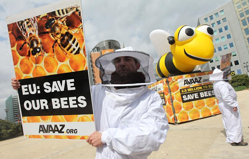 Beekeepers protest next to a giant inflatable bee in front of the European Council and Commission in Brussels, Monday, April 29, 2013. EU Member States meet on Monday, to decide on a proposal by the European Commission to impose a 2-year moratorium on neonicotinoid pesticides, which many scientists agree are the driving force behind Europe's dramatic bee decline. (AP Photo/Yves Logghe)