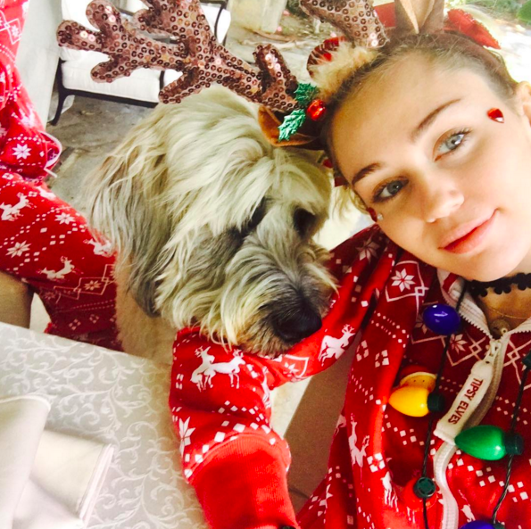 """<p>Of course, Miley and Liam's dogs were also in the holiday spirit! """"Dora says 'Woofy Barkmas,'"""" shared Cyrus. (Photo: <a rel=""""nofollow noopener"""" href=""""https://www.instagram.com/p/BOdBnsthmUh/"""" target=""""_blank"""" data-ylk=""""slk:Instagram"""" class=""""link rapid-noclick-resp"""">Instagram</a>) </p>"""