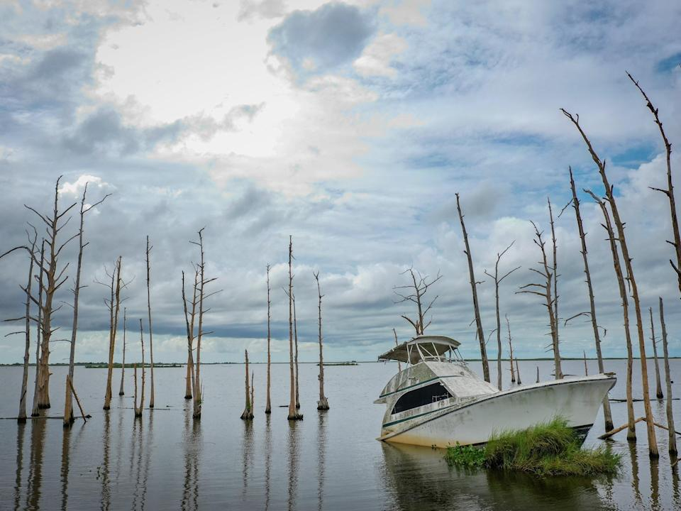 <p>An abandoned boat sits in the water amid dead cypress trees in coastal waters and marsh August 26, 2019 in Venice, Louisiana</p> (Getty Images)