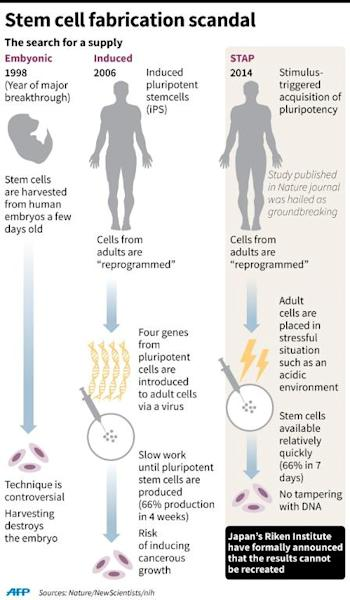 Graphic on methods to supply stem cells