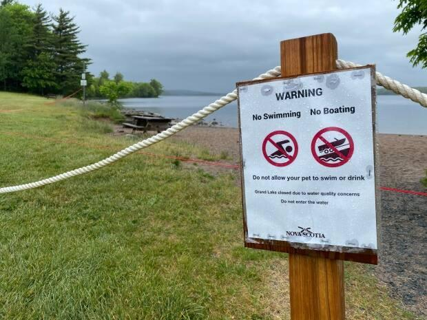 A warning sign at Oakfield Provincial Park on June 15. Toxins associated with blue-green algae have been confirmed in nearby Grand Lake. (Jack Julian/CBC - image credit)