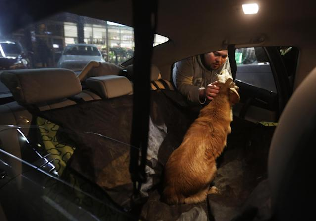 Alexei, an animal activist who would only give his first name, places a stray half-breed Labrador in his car after finding it at a cafe's back door, Monday, Feb. 10, 2014, in central Sochi, Russia, home of the 2014 Winter Olympics. Alexei is one of a dozen people in the emerging movement of animal activists in Sochi alarmed by reports that the city has contracted the killing of thousands of stray dogs before and during the Olympic Games. Stray dogs are a common sight on the streets of Russian cities, but with massive construction in the area the street dog population in Sochi and the Olympic park has soared. Useful as noisy, guard dogs, workers feed them to keep them nearby and protect buildings. They soon lose their value and become strays. Tonight, a few dogs will be taken on their way to a new life in Moscow. (AP Photo/David Goldman)