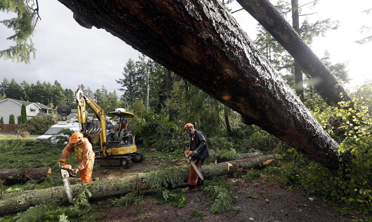 Workers with Woodland Industries Tree Experts work to clear trees that fell earlier in the day when a tornado moved through the Frederickson neighborhood near Puyallup, Wash., Monday, Sept. 30, 2013. (AP Photo/Ted S. Warren)