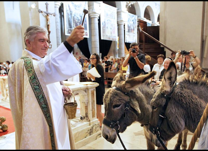 Gil Florini, of Saint-Pierre-d'Arene's church, blesses donkeys with holy water after a mass dedicated to animals on Oct. 9, 2011, in the southeastern French city of Nice.