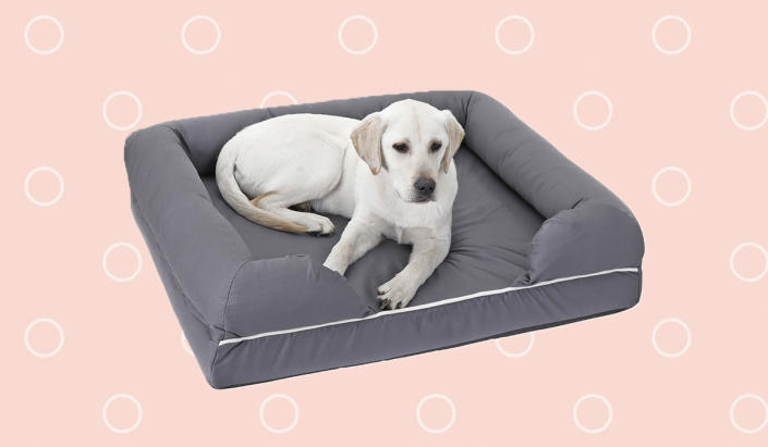 So comfy you'll be the one begging...for him to go out and get some exercise already. (Photo: Walmart)