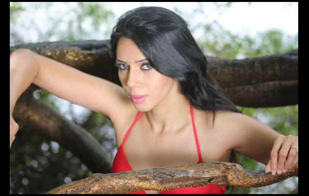 Rozlyn Khan to be Savita Bhabi?