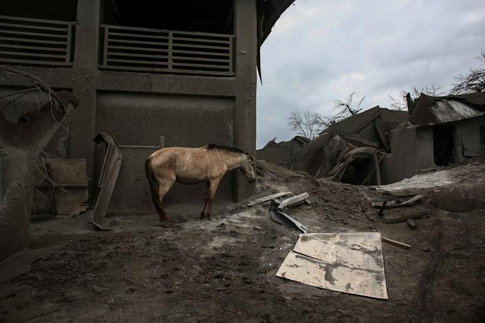 In this photograph in January 14, a horse stands beside a structure damaged by the Taal volcanic island in Tallaght, province of Batangas, the southern Philippines.