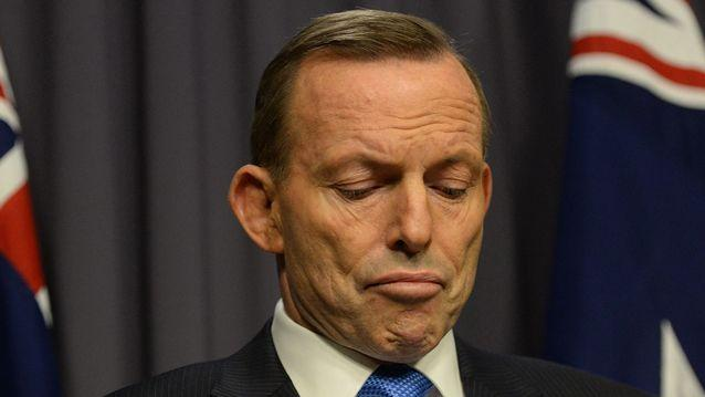 Questions have been raised about what role Tony Abbott should play in the government. Source: AAP