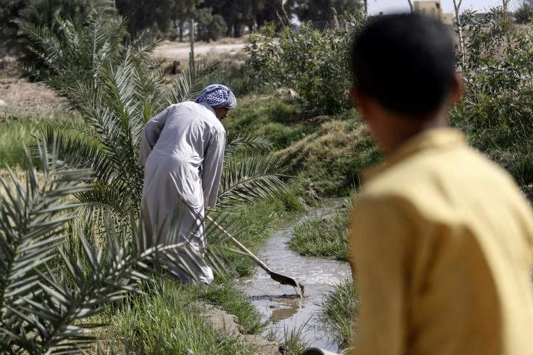 A boy watches as 73-year-old Iraqi farmer Abu Ali uses a shovel to dig in a stream of water in the village of Sayyed Dakhil, to the east of Nasariyah city some 300 kilometres (180 miles) south of Baghdad, on March 20, 2018