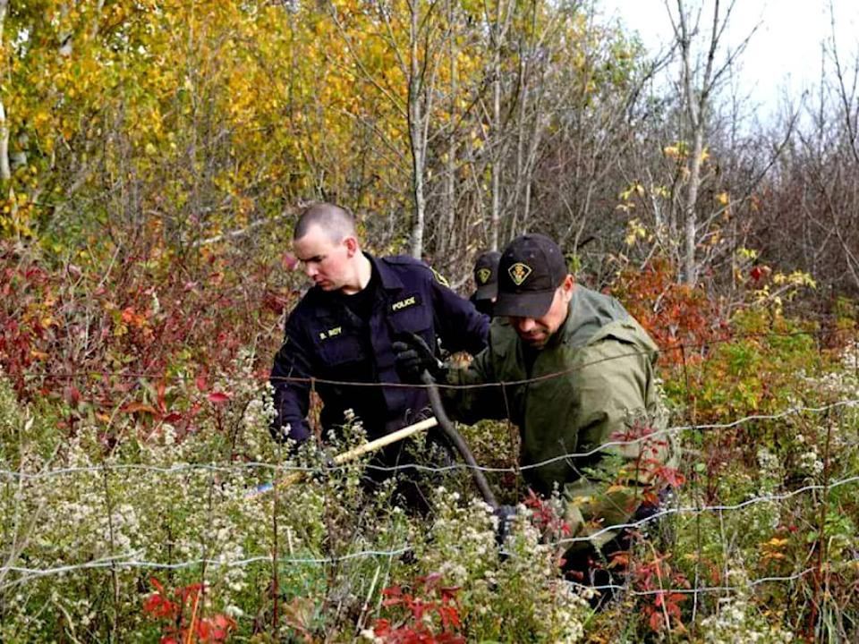 Ontario Provincial Police officers search a wooded area in North Cobalt following a fresh tip about 15-year-old Mélanie Ethier, who disappeared in 1996.  (Zacharie Routhier/Radio-Canada  - image credit)
