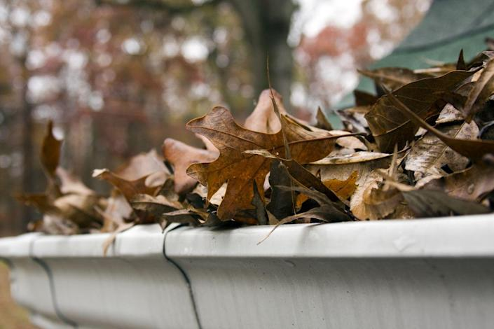 """<p>""""Leaves and debris from trees can slowly clog drains and gutters that may not be visible from the ground,"""" says Lewis Peters with <a href=""""https://www.icethaw.co.uk/"""" rel=""""nofollow noopener"""" target=""""_blank"""" data-ylk=""""slk:Icethaw"""" class=""""link rapid-noclick-resp"""">Icethaw</a>, an e-commerce company in the winter safety niche. """"If left untreated, it can allow rainwater to pool, and eventually leak into the house. Double check all of the exterior gutters and drains to ensure that water can flow through them easily, especially if you leave near a tree."""" If you're in a particularly cold part of the country, the water could freeze and cause the gutters to break, leading to roof damage.</p>"""