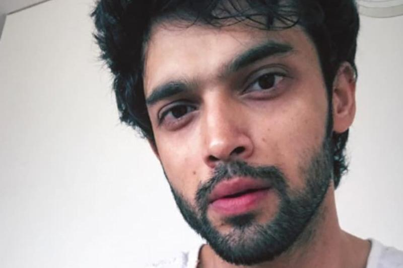 Netizens Slam Parth Samthaan for Allegedly Having a Pool Party Despite COVID-19 Lockdown