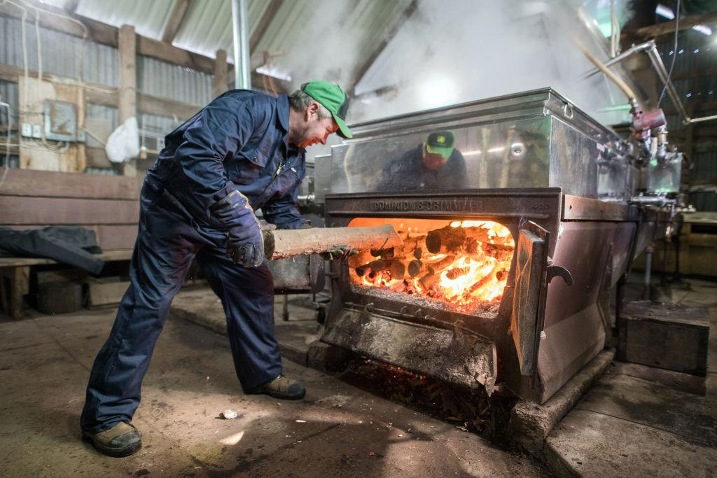 <p>A worker burns wood in evaporators used to boil maple tree sap at the Wagler Maple Products processing facility in Wessesley, Ont.<br />Canadian farmers are tapping maple trees earlier than ever as an unseasonably mild winter and shortage of snow has led to an early stimulation of the sap inside. Photo from James McDonald/Bloomberg/Getty Images. </p>