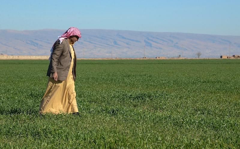Sunni Arab farmers in northern Iraq fear reprisals from other groups for abuses carried out by Islamic State group jihadists (AFP Photo/Zaid AL-OBEIDI)