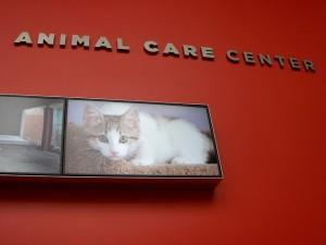Animal Care Centre