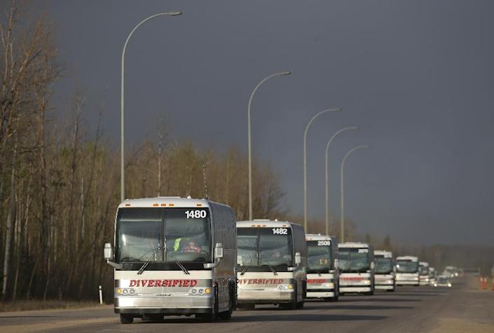 A line of busses make their way through a road block on Highway 63 near Fort McMurray, Alberta on May 6, 2016 (AFP Photo/Cole Burston)