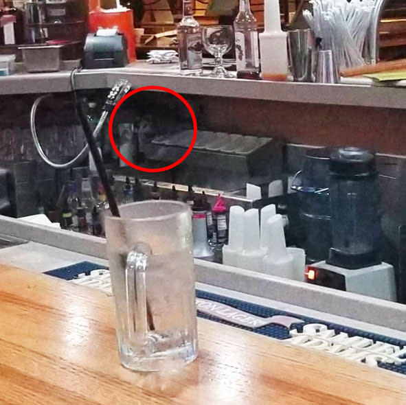 The opossum could be seen underneath the bar top. Source: Facebook Adriane Neico