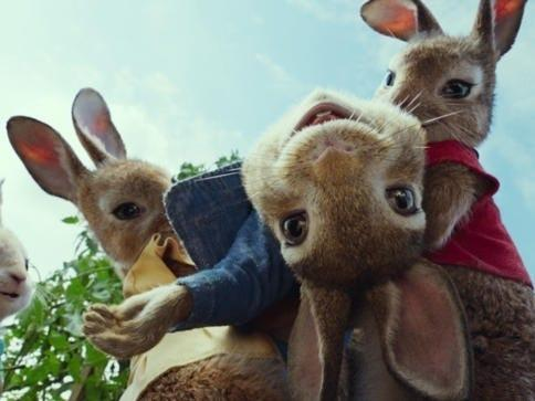 """""""Peter Rabbit"""" aired in 2018."""