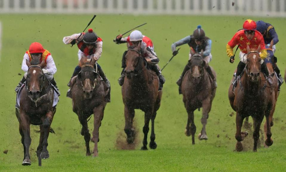 A new study has come as a boon to Racing Victoria, which is calling for whips to be phased out.