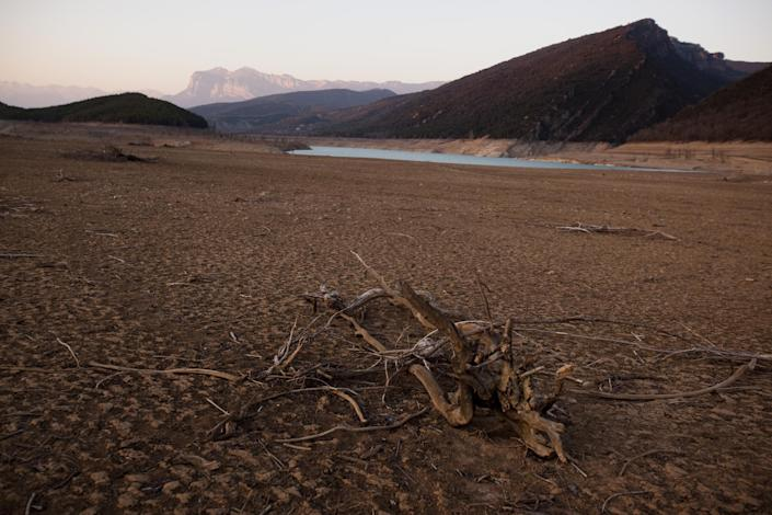 Remains of trees which are usually covered by water are seen inside the reservoir of Mediano, in Huesca, Spain, Tuesday March 13, 2012. One reservoir built in the 1950s, submerging a village called Mediano and its 16th century church, is so low on water that the ruins of buildings which are usually under water are now uncovered. Spain is suffering the driest winter in more than 70 years, adding yet another woe for an economically distressed country that can scarcely afford it. Thousands of jobs and many millions of euros could be in jeopardy. (AP Photo/Emilio Morenatti)