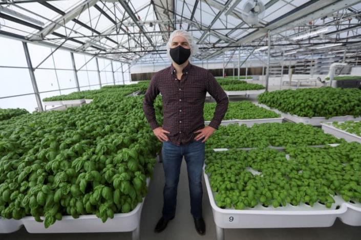 Iron Ox CEO Brandon Alexander poses for a portrait in the company's greenhouse in Gilroy, California