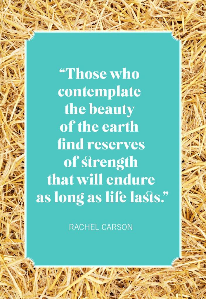 """<p>""""Those who contemplate the beauty of the earth find reserves of strength that will endure as long as life lasts.""""</p>"""