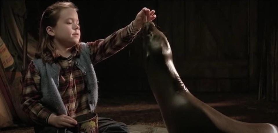 Toni, a little girl, feeds Andrew, a seal