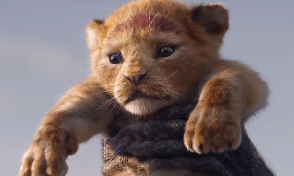 <p>From Disney Live Action, director Jon Favreau's all-new <em>Lion King</em> journeys to the African savanna where a future king is born. Simba idolizes his father, King Mufasa, and takes to heart his own royal destiny. But not everyone in the kingdom celebrates the new cub's arrival.<br>Scar, Mufasa's brother -and former heir to the throne – has plans of his own. The battle for Pride Rock is ravaged with betrayal, tragedy and drama, ultimately resulting in Simba's exile.<br>With help from a curious pair of newfound friends, Simba will have to figure out how to grow up and take back what is rightfully his. </p>