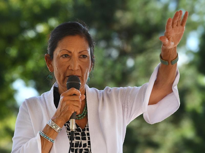 Deb Haaland is running for Congress in New Mexico's 1st congressional district against a Republican woman, Janice Arnold-Jones (AFP Photo/Mark RALSTON)