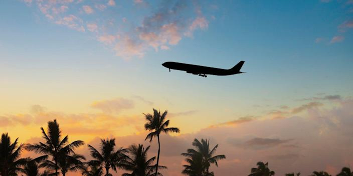 Plane flying over palm trees at sunset