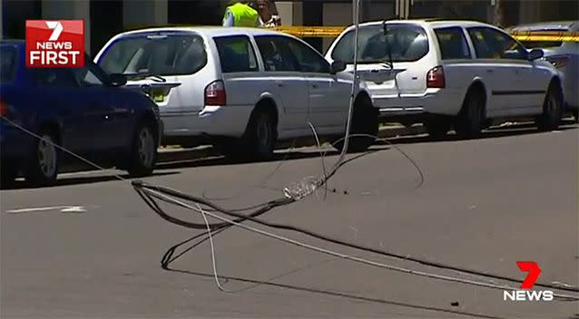 The driver and passenger were stuck in the truck until emergency crews could safely clear the live wires. Photo: 7 News