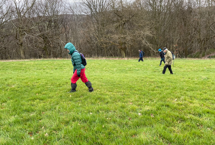 Four people walking in a line in a field.