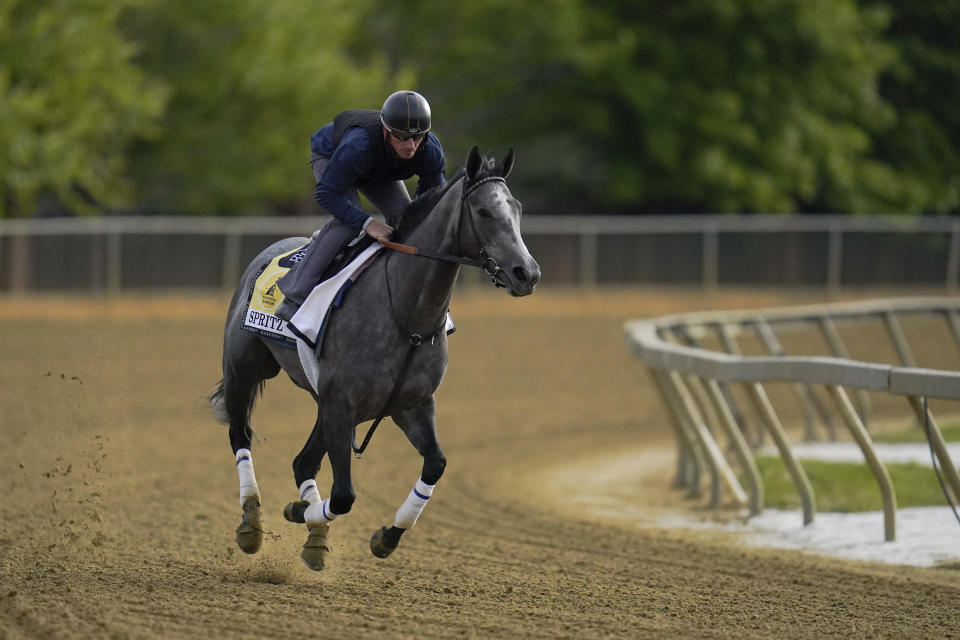 Black-Eyed Susan horse race entrant Spritz works out during a training session ahead of the race at Pimlico Race Course, Wednesday, May 12, 2021, in Baltimore. (AP Photo/Julio Cortez)