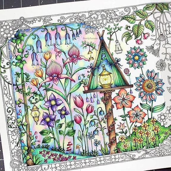 Unfinished page from an adult coloring book. Photo: Emilyillustrator/Instagram