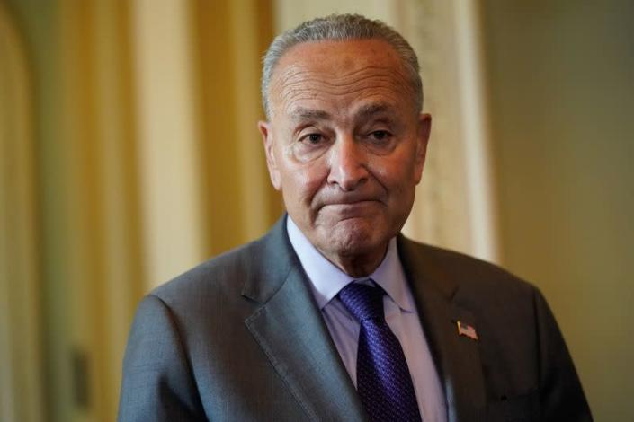 Senate Majority Leader Chuck Schumer (D-NY) speaks to reporters at the U.S. Capitol in Washington