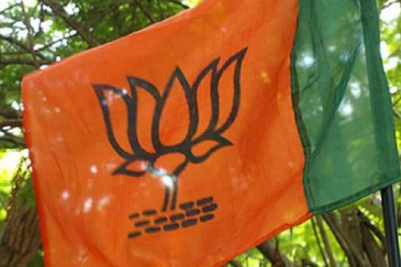 Six BJP Leaders Booked for Holding Narmada Kalash Yatra in Indore amid Covid-19 Pandemic