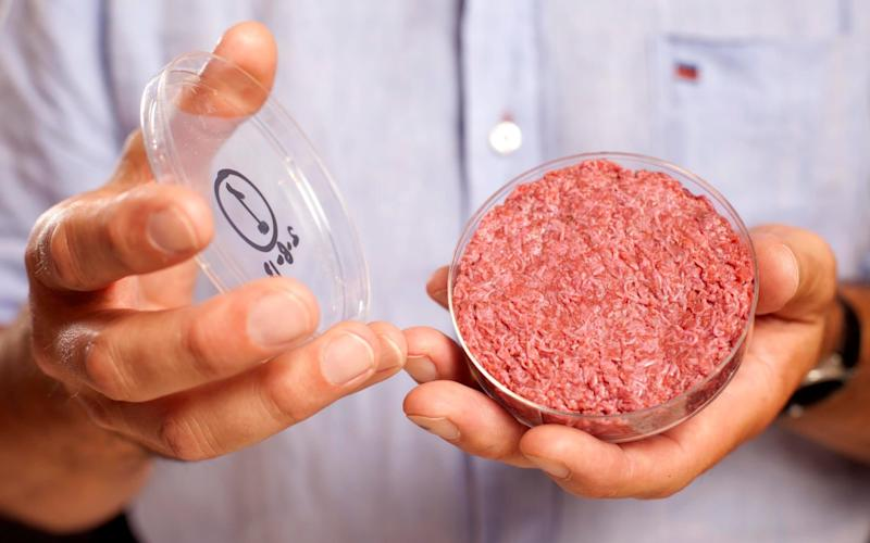 Would you eat a lab-grown beef burger?  - PA