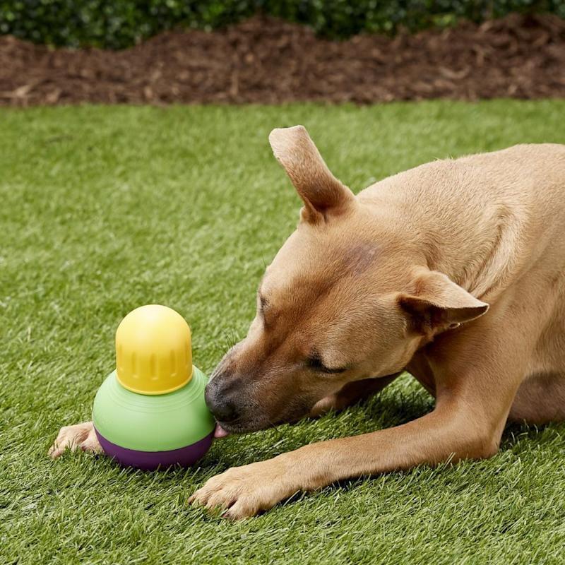 The mentally stimulating toy helps pets stay engaged while they work to release food and treats (Photo: Starmark)