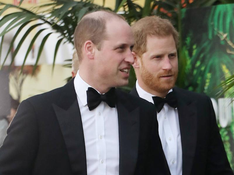 Prince Harry and Prince William dismiss 'false story' about their relationship