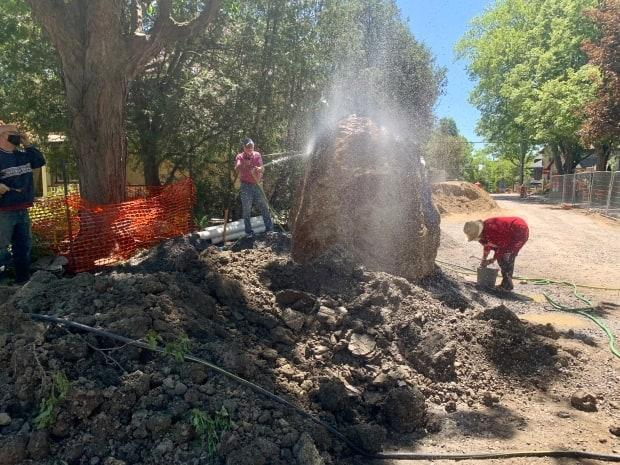 Neighbours on Bellwood Avenue held a 'washing party' for the rock Saturday so that a local mineralogist could get a better look at it.