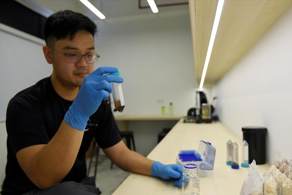 Phua Jun Wei, 31, chief technology officer and co-founder of Insectta, shows Reuters a tube of melanin solution during a laboratory demonstration in Singapore March 3, 2021. Picture taken March 3, 2021. REUTERS/Caroline Chia