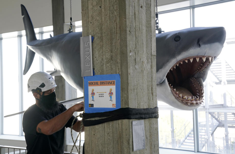"""A fiberglass replica of Bruce, the shark featured in Steven Spielberg's classic 1975 film """"Jaws,"""" looms over worker Will Wilson of LA Pro Point after it was raised into a suspended position for display at the new Academy of Museum of Motion Pictures, Friday, Nov. 20, 2020, in Los Angeles. The museum celebrating the art and science of movies is scheduled to open on April 30, 2021. (AP Photo/Chris Pizzello)"""