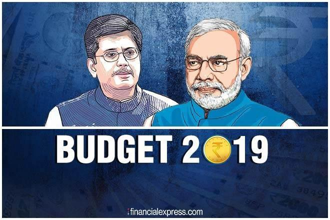 Budget 2019, interim budget 2019, FY 2019-20, Budget 2019 Convention vs Economic realities - which way the 2019 budget can go