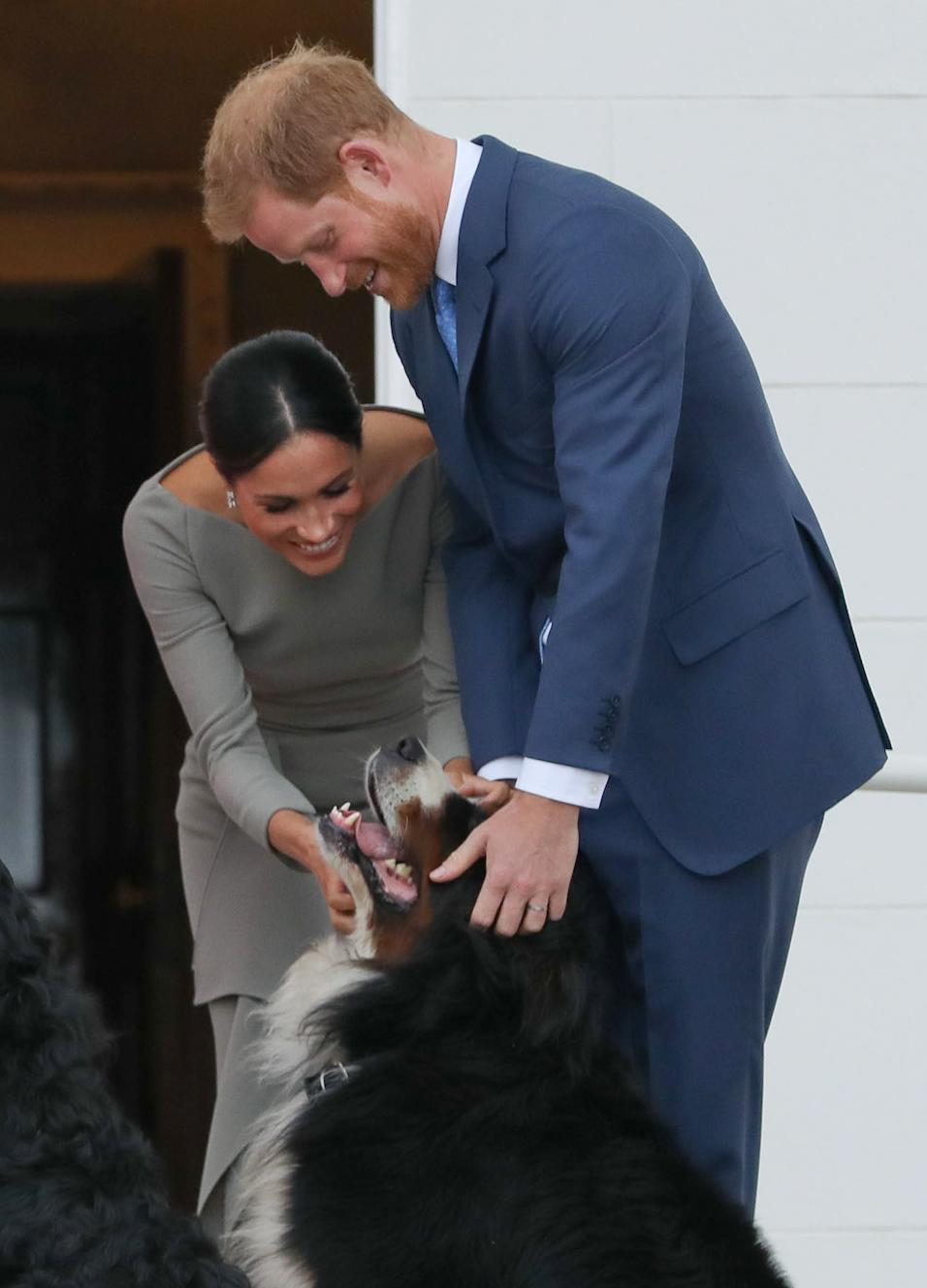Britain's Prince Harry (R) and wife Meghan (2R), Duke and Duchess of Sussex greet the dogs of Ireland's President Michael Higgins and wife Sabina on arrival at the Presidential mansion on the second day of their visit in Dublin on July 11, 2018. (Photo by MAXWELLS / POOL / AFP)        (Photo credit should read MAXWELLS/AFP/Getty Images)