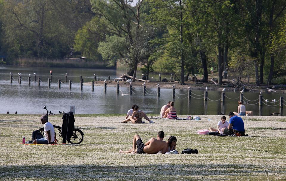 People are seen sunbathing by the lake in Regents Park as lockdown restrictions remain in place. (Getty Images)