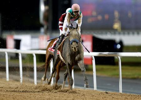 Horse Racing - Dubai World Cup - Meydan Racecourse, Dubai - 25/3/17 - Mike Smith rides Arrogate to the finish line to win the ninth and final race. REUTERS/Ahmed Jadallah
