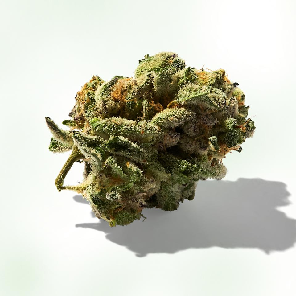 """""""The first time I smoked <a href=""""https://www.prufcultivar.com/"""" rel=""""nofollow"""" target=""""_blank"""">Prūf Cultivar</a>'s Doug Fir, I went on a three-mile run, cooked dinner, and cleaned the kitchen. It was incredible. This flower has high levels of alpha-Pinene and alpha-Humulene, terpenes known for energy and memory retention."""""""