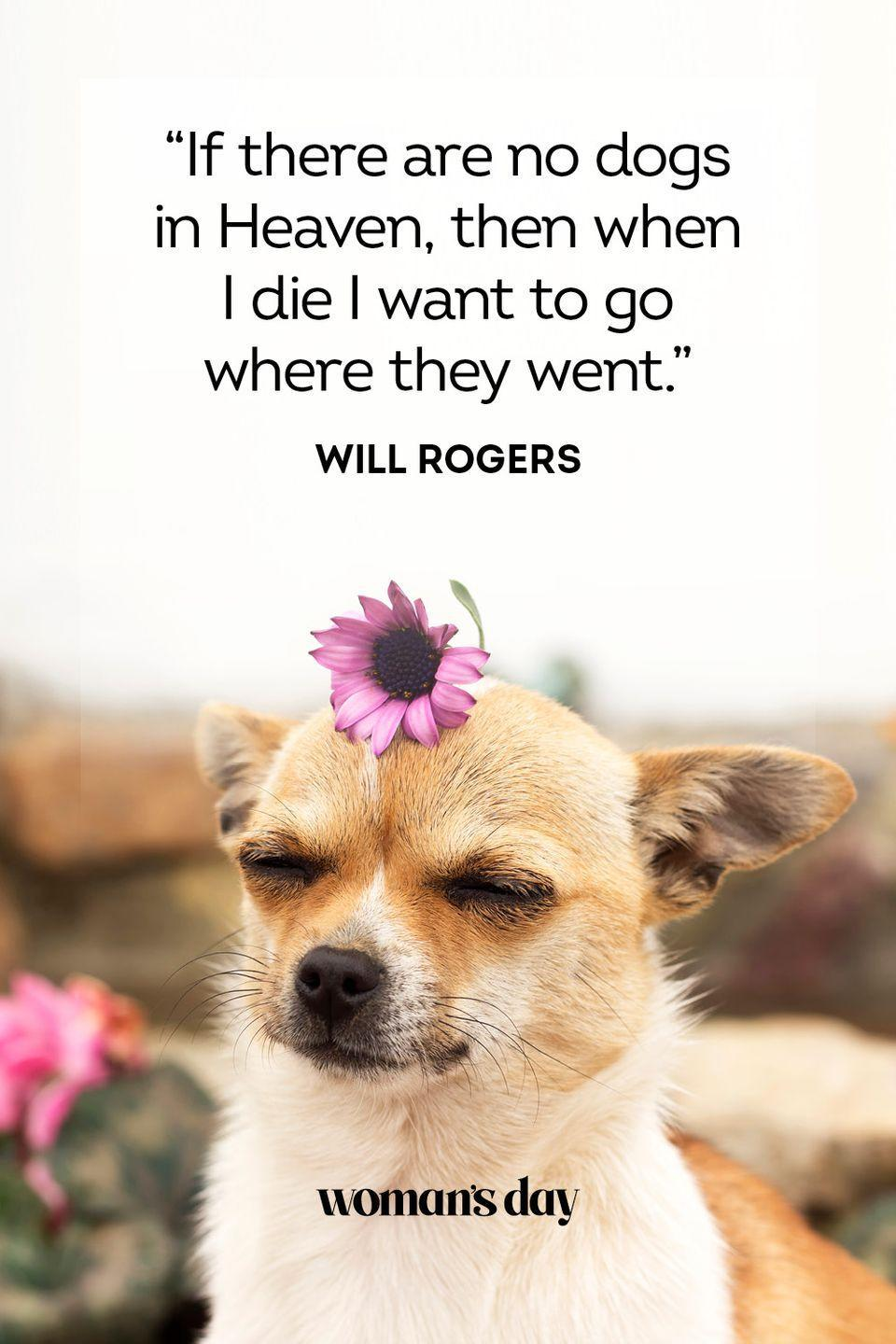 """<p>""""If there are no dogs in Heaven, then when I die I want to go where they went.""""</p>"""