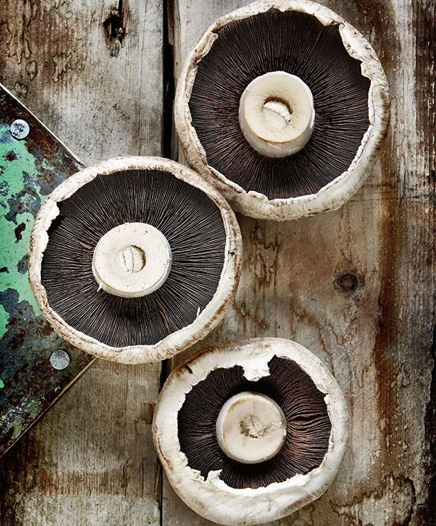 New research says mushroom molecules could be the next big sugar replacement. Photo: Getty images